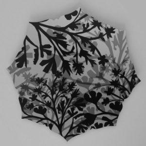 Pantea-Karimi-Healing-Gardens-buttercup